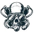 skull_logo